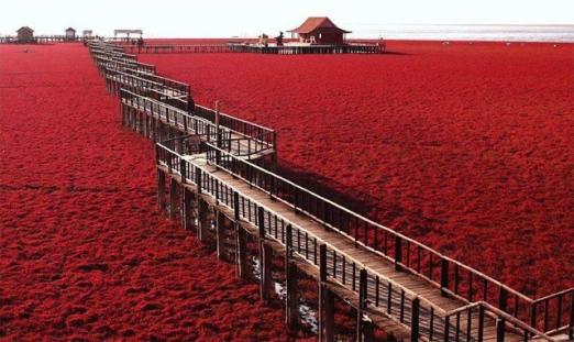 praia_vermelha_china_3